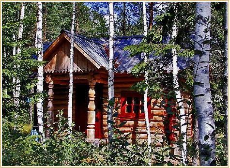 Картинки по запросу аренда лесного участка плюсы